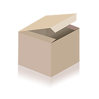 Monster Energy Drink Assault 12x 0,5l EINWEG Dose